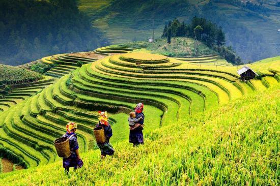 Очарованието на Индокитай - пътешествие из Виетнам,   Камбоджа и Лаос есен 2020
